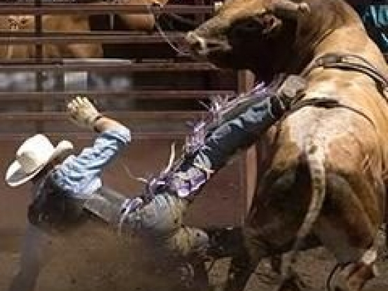 National Finals Rodeo Tickets Las Vegas Dec 5, 2019