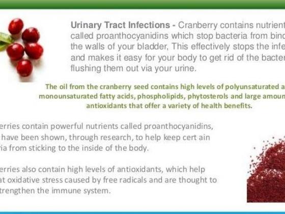 Cranberry Seeds Health Benefits